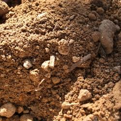 2cab87b1038 Achat de terre végétale en vrac - Terre et Végétal