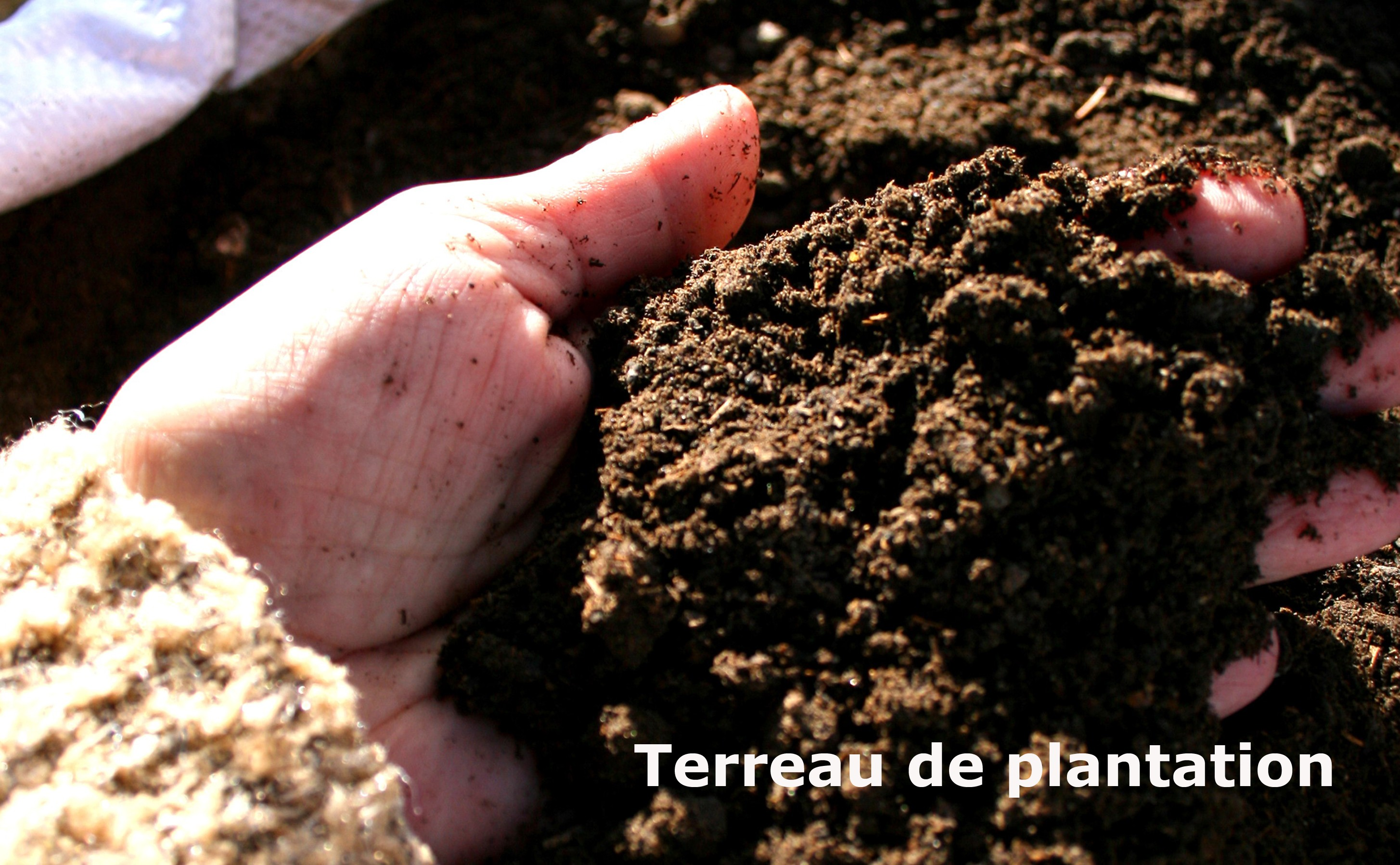 Terreau de plantation